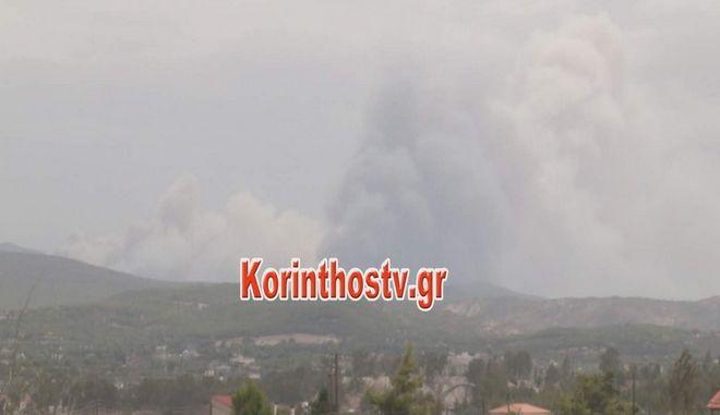 Δήμαρχος Μεγαρέων για φωτιά στην Κινέτα: Οι φλόγες πλησιάζουν τον οικισμό Γαλήνη