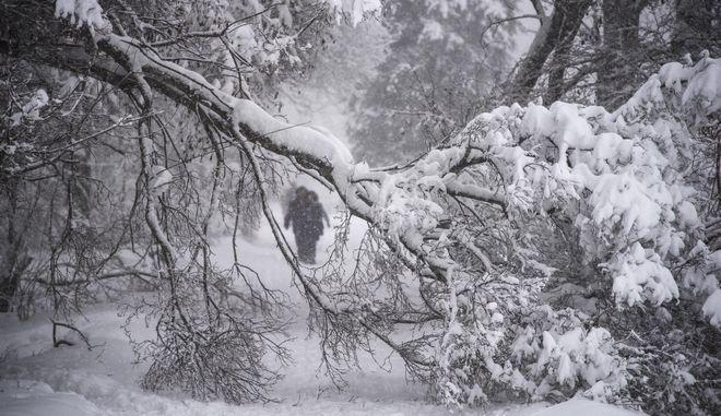 Ρωσία: Ένας νεκρός από σφοδρή χιονόπτωση στη Μόσχα