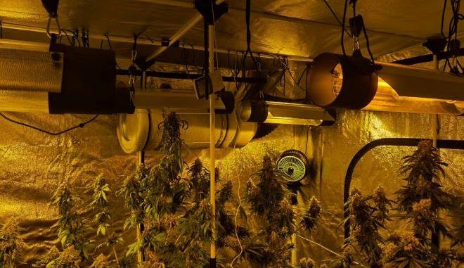 Εξαρθρώθηκε εγκληματική οργάνωση, η οποία διακινούσε ναρκωτικά σε Αττική και Δωδεκάνησα