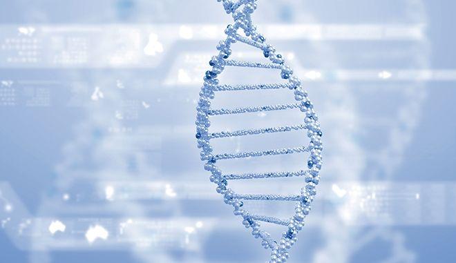 Φως στο γενετικό υπόβαθρο της εξυπνάδας: Πάνω από 500 γονίδια συνδέονται με τη νοημοσύνη