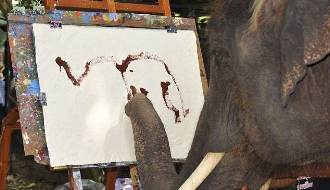 """Ελέφαντας """"Πικάσο"""" μαγεύει με τις δημιουργίες του"""