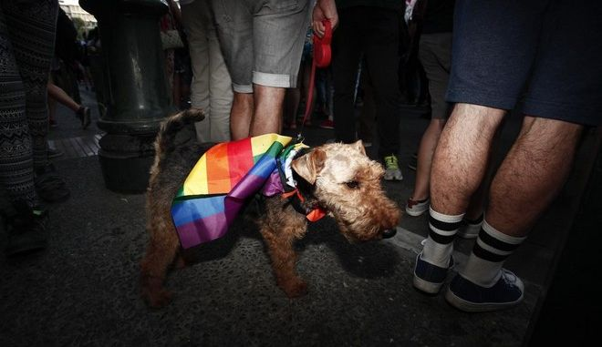 Ten years anniversary of the  Athens Gay Pride,on June 14,2014  /          14  2014