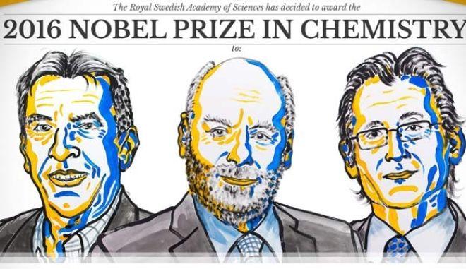 Νόμπελ Χημείας στους Σοβάζ, Στόνταρτ και Φερίνγκα