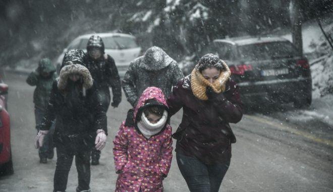 Χιονόπτωση στην Πάρνηθα, Αρχείο
