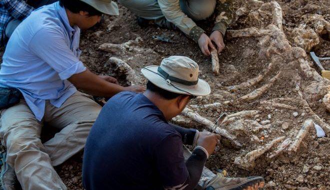 Παλαιοντολόγοι βρίσκουν σκελετό από δεινόσαυρο