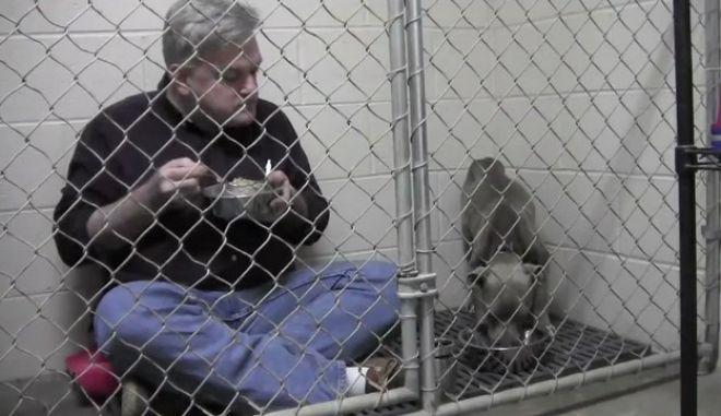 Βίντεο: Κτηνίατρος κλείστηκε σε κλουβί μ' ένα κακοποιημένο pit bull για να το πείσει να φάει