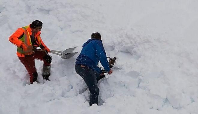 Ηρωϊκή προσπάθεια εργατών να απεγκλωβίσουν κατσίκα από το χιόνι