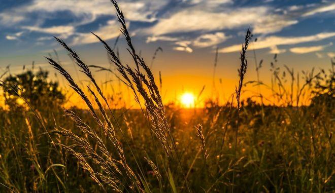 ΕΤΕπ, Εθνική και Τράπεζα Πειραιώς χρηματοδοτούν τον αγροτικό τομέα με επενδύσεις 560 εκατ. ευρώ