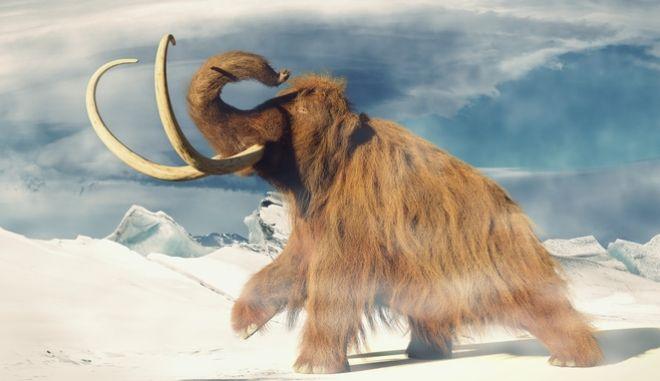 Τα μαμούθ επιστρέφουν - Τι τα οδήγησε στην εξαφάνιση;