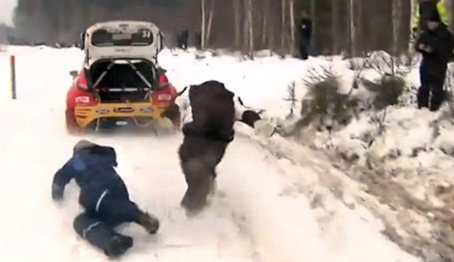 Βίντεο από WRC: Οδηγός ευχαριστεί τους θεατές που τον έβγαλαν από το χαντάκι