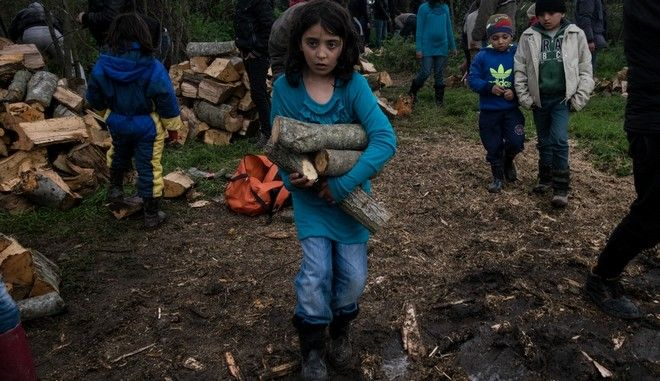 Migrants and refugees collect fire woods in the makeshift camp near the village of Idomeni, Greece on March 24, 2016.