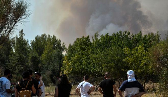 Αναζωπύρωση της φωτιάς στη Βαρυμπόμπη