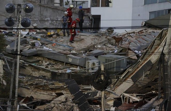 A rescue dog helps workers look for people trapped under the rubble of a collapsed building in Mexico City, Tuesday, Sept. 19, 2017. A 7.1 earthquake stunned central Mexico, killing more than 100 people as buildings collapsed in plumes of dust. (AP Photo/Rebecca Blackwell)