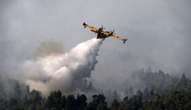 Φωτιά στην Εύβοια νέες ρίψεις από τα Καναντέρ