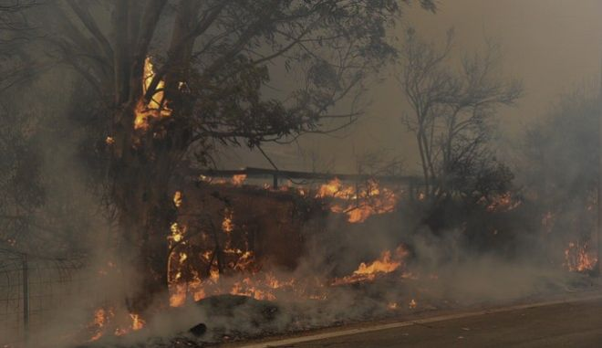 Αχαϊα: Συγκλονιστικές εικόνες από τη μεγάλη φωτιά