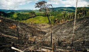 Υπάρχει όριο στην αισιοδοξία σχετικά με την κλιματική αλλαγή;