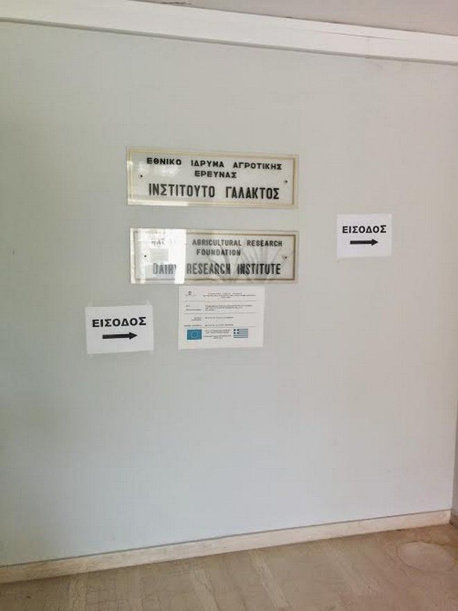 Υπόθεση Γιακουμάκη: Η άλλη πλευρά της Γαλακτοκομικής Σχολής