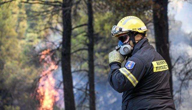 Πυρκαγιά σε δασική έκταση στην περιοχή Αγριλίτσα του δήμου Διρφύων-Μεσσαπίων, στην Εύβοια