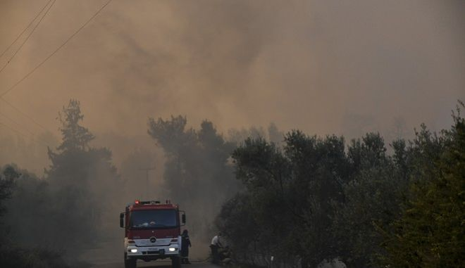 Φωτό αρχείου: Πυρκαγιά σε δασική έκταση στην Εύβοια.