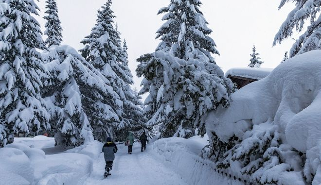 Children walk past trees after heavy snowfall in Saas Fee village, near Zermatt in the Swiss Alps, Tuesday, Jan. 9, 2018. Unusually heavy snowfall and a high risk of Alpine avalanches stranded some 13,000 tourists Tuesday in the Swiss resort of Zermatt at the base of the famed Matterhorn mountain. With nearby roads, trains, cable cars, ski slopes and hiking trails into the town closed, Swiss authorities deployed helicopters to ferry some tourists to a nearby village to escape the snow-bound Alpine valley. (Marko Knezevic via AP)