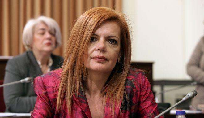 Ενημέρωση των μελών της Επιτροπής Παρακολούθησης των Αποφάσεων του Ευρωπαϊκού Δικαστηρίου των Δικαιωμάτων του Ανθρώπου  από την Μαρία Γιαννακάκη, Γενική Γραμματέα Διαφάνειας και Ανθρωπίνων Δικαιωμάτων του Υπουργείου Δικαιοσύνης, Διαφάνειας και Ανθρωπίνων Δικαιωμάτων και τον Στυλιανό Περράκη, Πρέσβη - Μόνιμο Αντιπρόσωπο της Ελλάδος στο Συμβούλιο της Ευρώπης, την παρασκευή 31 Μαρτίου 2017. (EUROKINISSI/ΓΙΩΡΓΟΣ ΚΟΝΤΑΡΙΝΗΣ)
