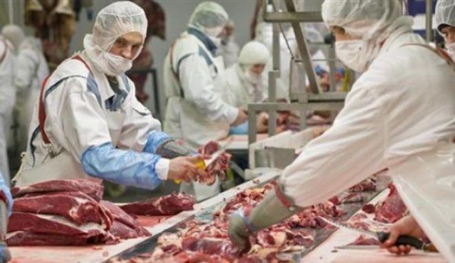 Τους έπιασαν γιατί διακινούσαν 1 τόνο σάπια κρέατα. Είχαν συλληφθεί ξανά για... σάπια όστρακα
