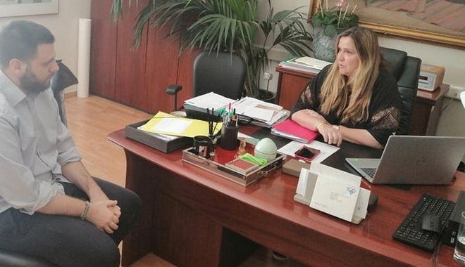 Η πρόεδρος του ΟΠΑΝΔΑ, Άννα Ροκοφύλλου στο news247.gr