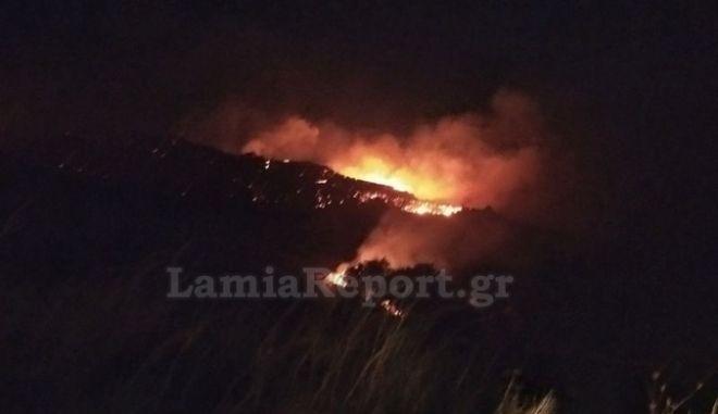 Φθιώτιδα: Υπό έλεγχο η πυρκαγιά στη Μενδενίτσα