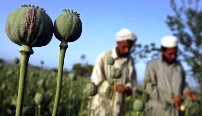 Συμβούλιο της Ευρώπης: Επείγον, αντιμετωπίστε το εμπόριο ηρωίνης από το Αφγανιστάν