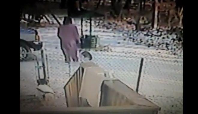 """Βίντεο: Η γάτα του """"Σατανά"""" επιτίθεται"""