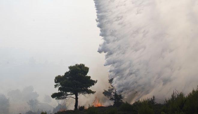 Φωτό αρχείου: Ελικόπτερο ρίχνει νερό σε κατάσβεση δασικής φωτιάς