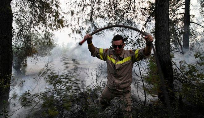 Πυρκαγιά σε δασική έκταση Εύβοια