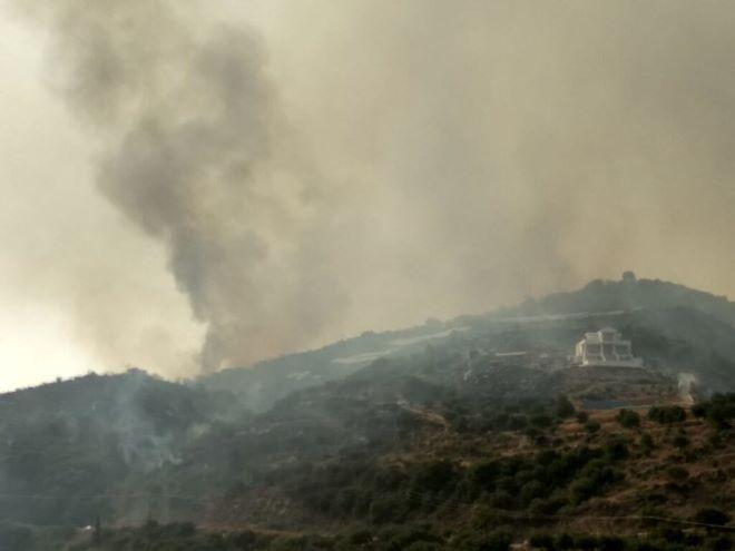 Φωτιά στην περιοχή Βασιλίτσι