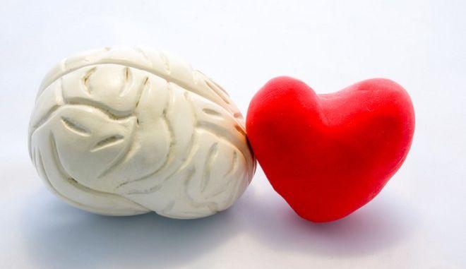 Απεικόνιση εγκεφάλου και καρδιάς.