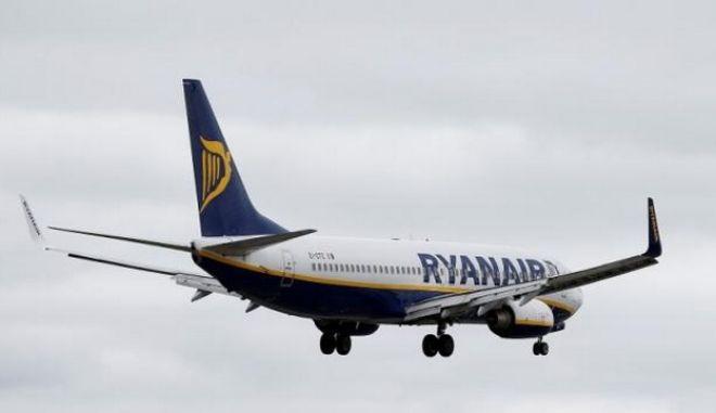 Αναστάτωση στη Ρόδο: Αεροσκάφος χτύπησε αγέλη σκύλων την ώρα της απογείωσης