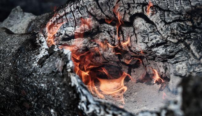 Καταστροφική πυρκαγιά στην Εύβοια