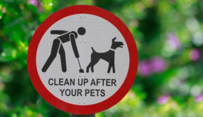 Iσπανία: Δεν μαζέψατε τις ακαθαρσίες του σκύλου σας; Θα σας έρθουν με κούριερ στο σπίτι!