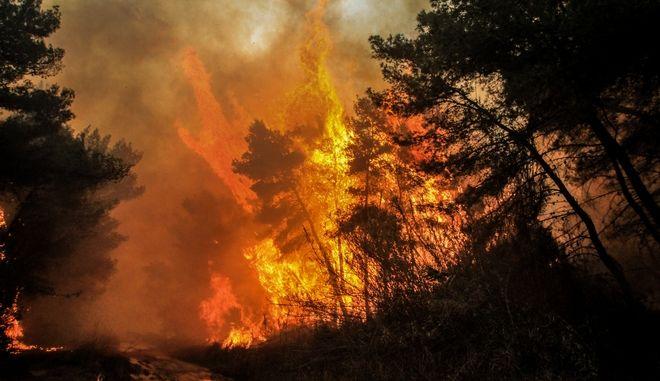 Πυρκαγιά (ΦΩΤΟ ΑΡΧΕΙΟΥ)