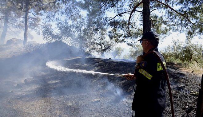 Πυροσβέστης (ΦΩΤΟ ΑΡΧΕΙΟΥ)