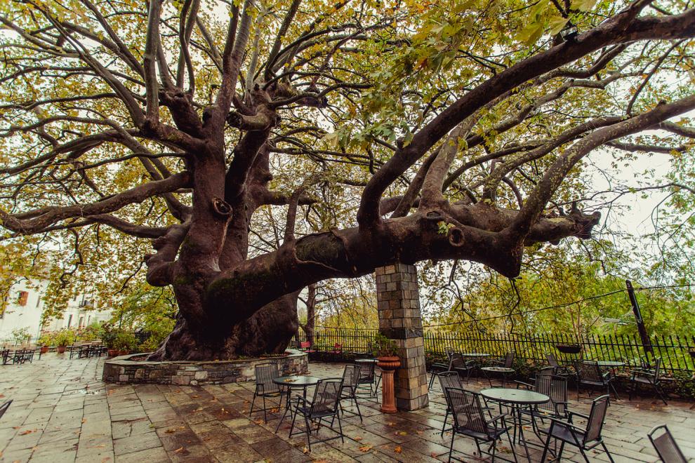 10 μαγευτικές στάσεις στο φθινοπωρινό Πήλιο