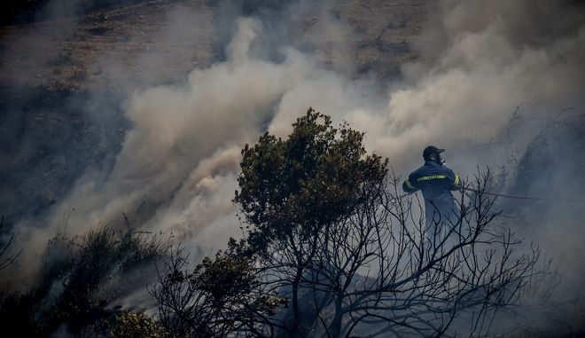 Στιγμιότυπο από την πυρκαγιά στην Εύβοια,στην περιοχή Αυλωνάρι Αλιβερίου