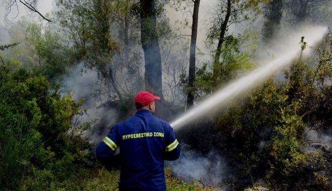 H πυρκαγιά στις Κεχριές Κορινθίας