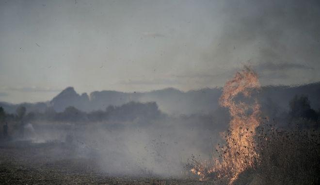Πυρκαγιά στο αγρόκτημα του Μεγάλου Κεφαλόβρυσου, κοντά στους Αγίους Αποστόλους και το Μικρό Κεφαλόβρυσο το απόγευμα της Παρασκευής 21 Σεπτεμβρίου 2017. Στο σημείο ισχυρές πυροσβεστικές δυνάμεις, εθελοντές και κάτοικοι των χωριών προσπαθούν να θέσουν υπό έλεγχο τη φωτιά αλλά είναι πολύ δύσκολο, καθώς οι άνεμοι αλλάζουν κατεύθυνση συνεχώς και η φωτιά καταστρέφει στο διάβα της ότι βρει. Μέχρι στιγμής έχουν καεί εκατοντάδες στρέμματα με καλαμιές, άλλες καλλιεργήσιμες εκτάσεις, χορτολιβαδική έκταση και εκτάσεις με ελαιόδεντρα, ενώ κινδυνεύουν αμπέλια και περιβόλια.  (EUROKINISSI/ΘΑΝΑΣΗΣ ΚΑΛΛΙΑΡΑΣ)