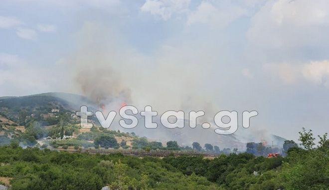 Εικόνα από την φωτιά στο χωριό Δίβρη