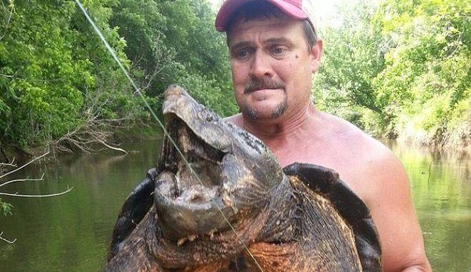 """Ψάρεψε """"προϊστορική"""" χελώνα αλιγάτορα 45 κιλών"""