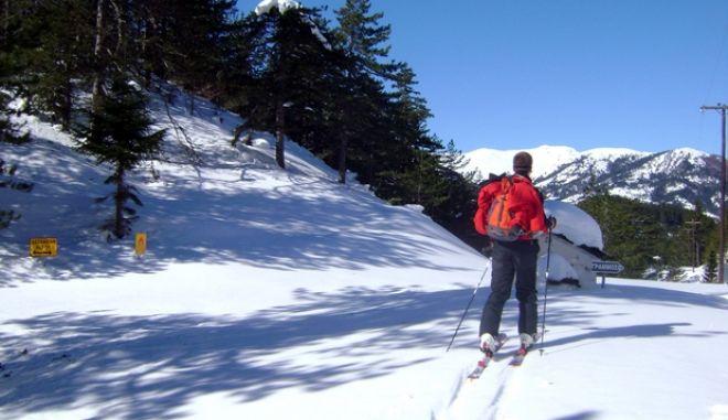 Στο μεταξύ την ίδια ημέρα ένας από τους κατοίκους της περιοχής αλλά και θύμα των λεηλασιών ήταν ο Γιώργος Σπύρου (ιδιοκτήτης του GRAMMOS LODGE), γνωστός για την αγάπη και το ενδιαφέρον του για τον Γράμμο, μαζί με τον φίλο του Δαμιανό Κεφαλά επιχείρησαν να πάνε στο χωριό φορώντας ορειβατικά σκι, για το τριήμερο της αποκριάς  Ωστόσο, για να διανύσουν την απόσταση των 18 χιλ. μέσα στα χιόνια έκαναν ούτε λίγο ούτε πολύ επτά ολόκληρες ώρες!!!  Για να αντικρίσουν ένα λεηλατημένο χωριόβ¦ Όμως, στη διαδρομή φθάνοντας στο Λιανοτόπι συνάντησε τους συνοριοφύλακες με το ερπυστριοφόρο, οι οποίοι επέστρεφαν από την Κοινότητα Γράμου όπου βρισκόταν εκεί για σχετικό έλεγχο και ήταν οι πρώτοι που διαπίστωσαν τις λεηλασίες στα σπίτια της ορεινής Κοινότητας. Για την κατάσταση που αντίκρισαν στην περιοχή ενημέρωσαν τον Γεώργιο Σπύρου για τις ζημιές που προκλήθηκαν και τον ξενώνα του. Κατόπιν ο ίδιος συνέχισε την πορεία του προς το χωριό όπου και είδε τις ζημιές που προκλήθηκαν τόσο στον ίδιο όσο και στα υπόλοιπα σπίτια. Το νέο κύμα κακοκαιρίας είχε αποκλείσει τελείως την πρόσβαση στην περιοχή, αφού το ύψος του χιονιού σε ορισμένα σημεία έφθανε μέχρι και 2 μ. κάτι που έκανε αδύνατη τη διάνοιξη του δρόμου ακόμη και με το εκχιονιστικό μηχάνημα της Π.Ε. Καστοριάς. Έτσι, την επόμενη ημέρα (Κυριακή) το πρωί με πρωτοβουλία του Συνοριακού Σταθμού Νεστορίου το 15θέσιο ερπυστριοφόρο κάτω από αρκετά δύσκολες συνθήκες ξεκίνησε την προσπάθειά του για να φθάσει στην Κοινότητα Γράμου, έχοντας πάρει μαζί του και κατοίκους της περιοχής προκειμένου να δούνε από κοντά τις ζημιές αλλά και τις κλοπές. (EUROKINISSI // ΣΥΝΕΡΓΑΤΗΣ)