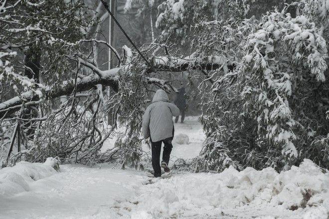Χιόνια στον Διόνυσο από την κακοκαιρία