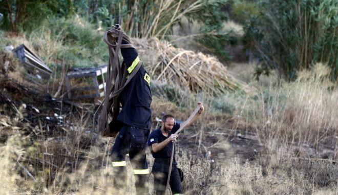 Πυρκαγιά σε αγροτοδασική έκταση στο Πικέρμι (αρχείου)