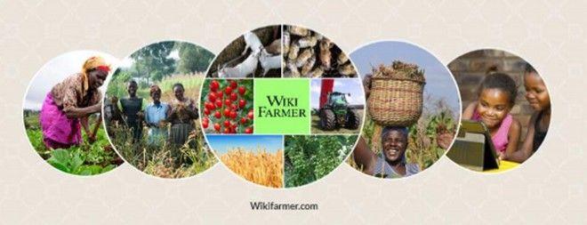Το wikifarmer.com σου δείχνει πώς να γίνεις αγρότης