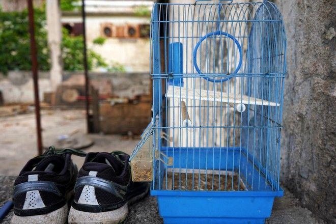 The game: Περιμένοντας το πλοίο για την ελπίδα στην Πάτρα